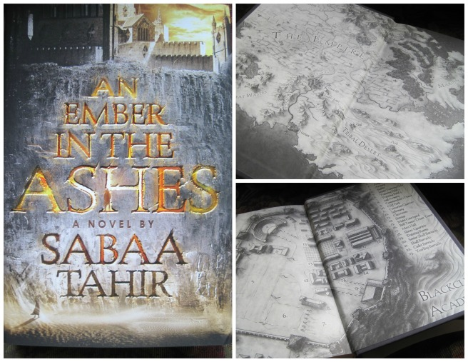 An Ember in the Ashes Collage
